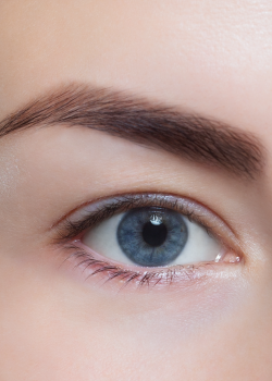 half-eye